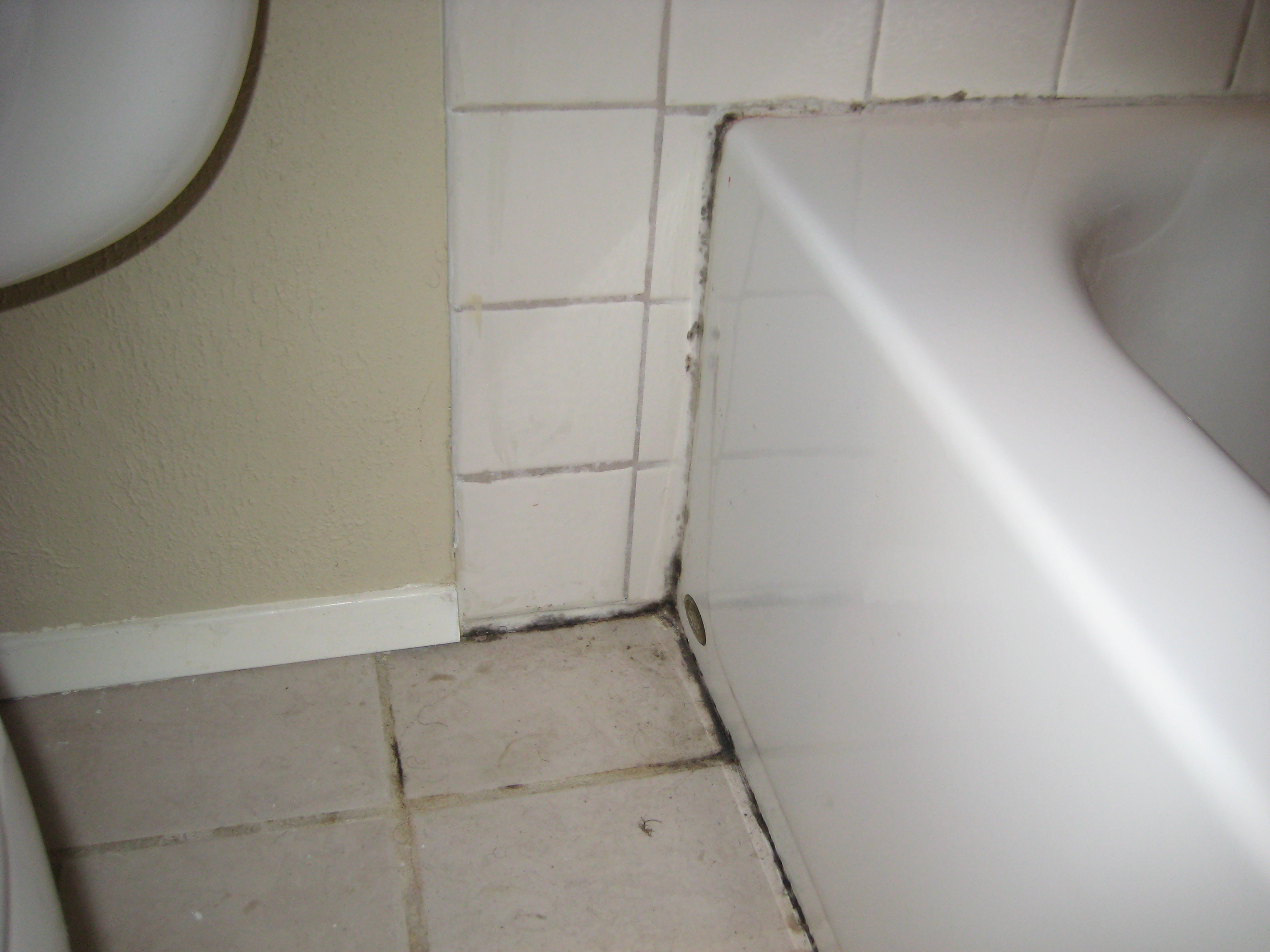 check out the bath and tub grout