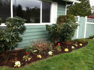A Front Yard Planting Bed Filled With Color