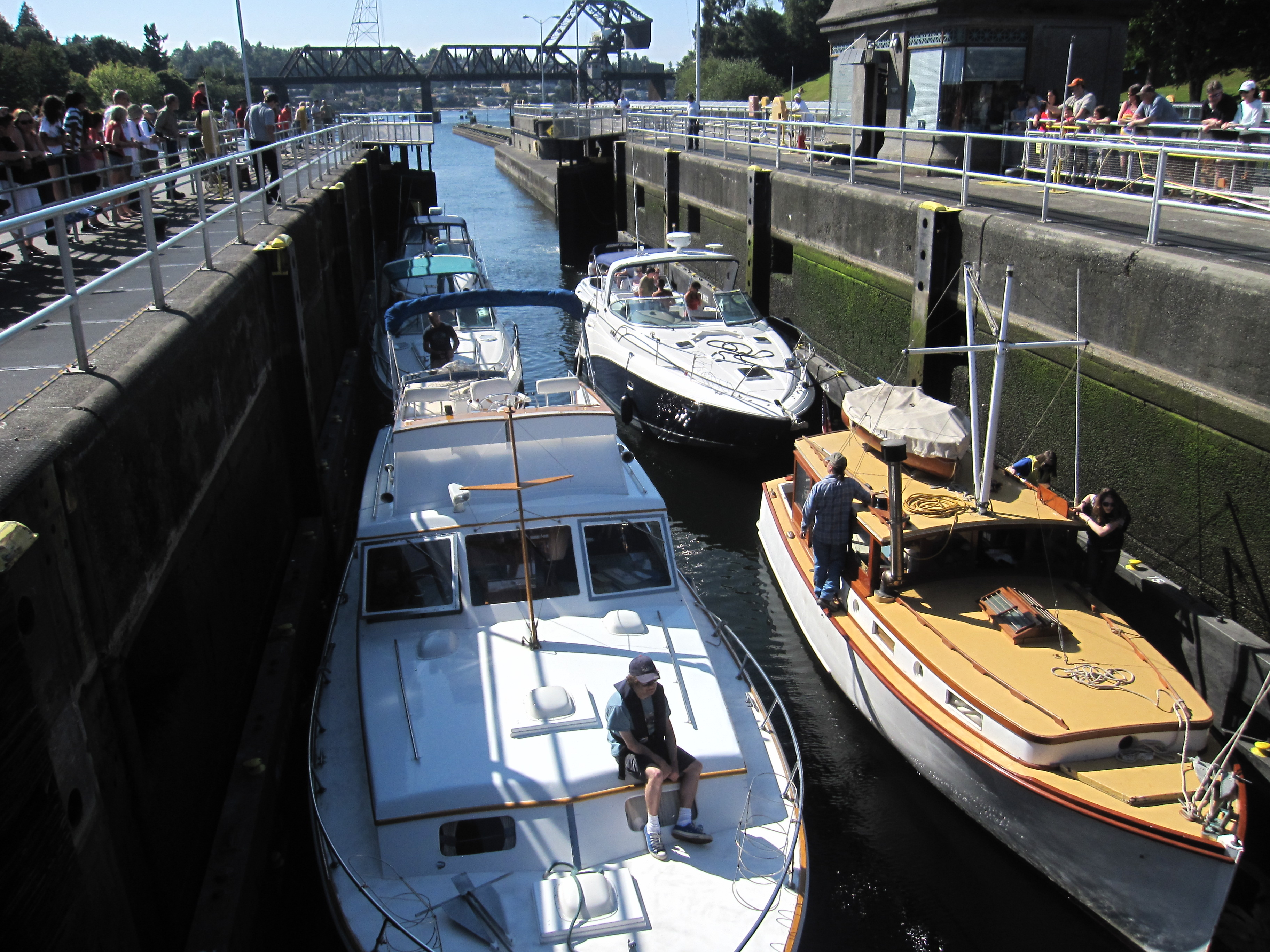 Seattle's Ballard Locks